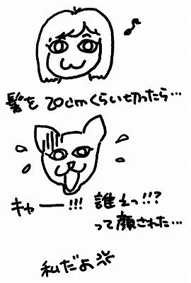 scan00001-s.jpg