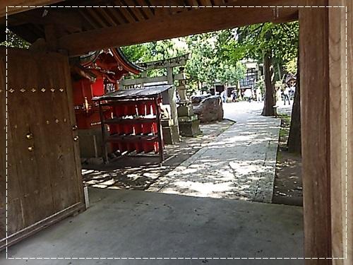 DSC_04010.jpg