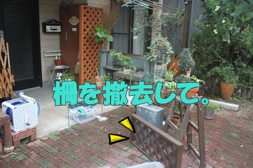 IMG_56850.jpg
