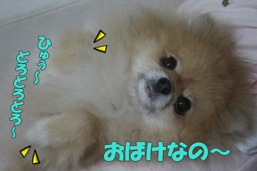 IMG_58160.jpg
