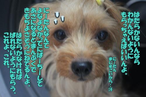 IMG_6139000.jpg