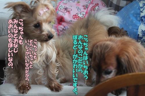 IMG_615500.jpg