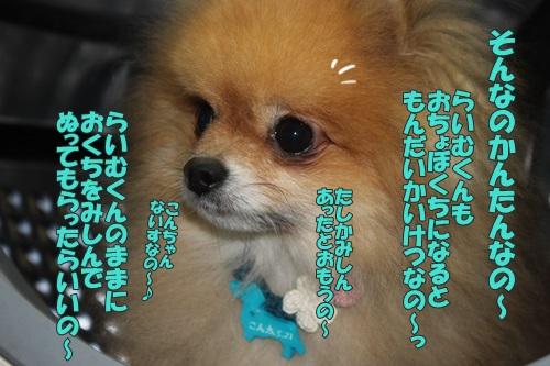 IMG_61850.jpg