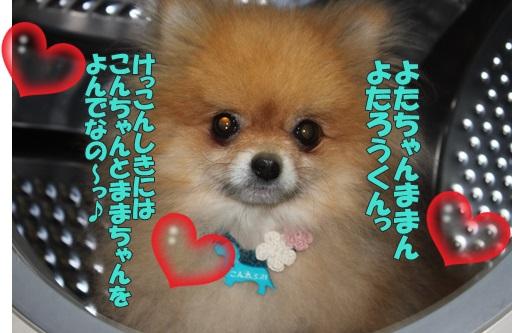 IMG_618800.jpg