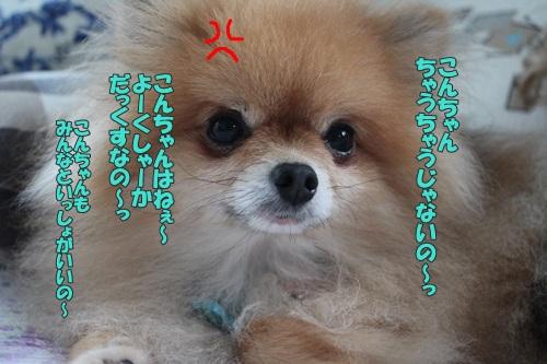 IMG_63410.jpg