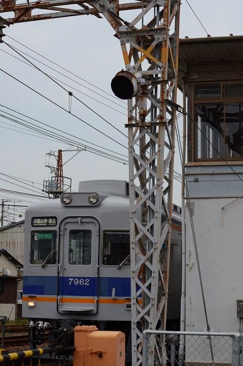 DSC_4904.jpg