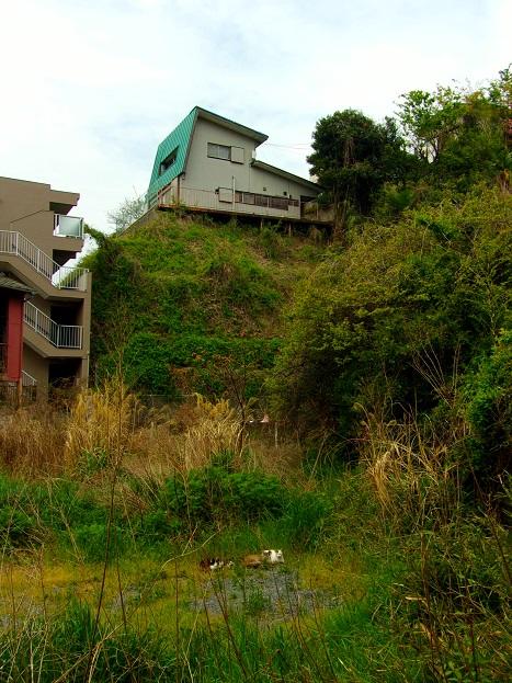 斜面の家々