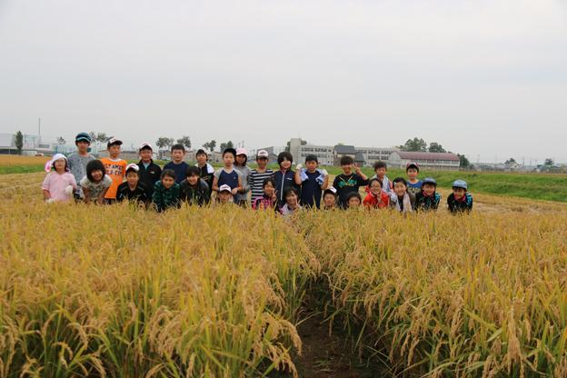 20150924稲刈り