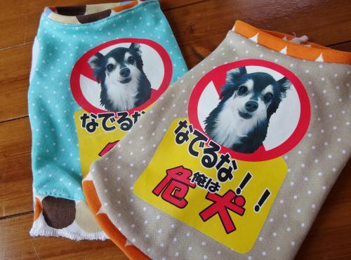 犬の学校番外編