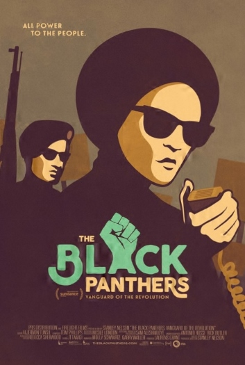 Black Panthers Poster