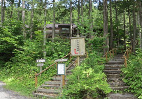 20150624_akazawa4.jpg