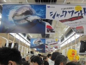 海遊館吊り広告1