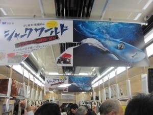 海遊館吊り広告2