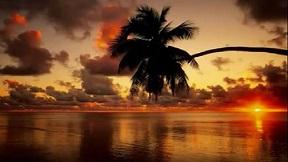 南国の夜 バッキー白片とアロハ ハワイアンズ