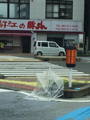 台風すごい