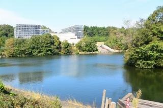 岡崎中央総合公園 恩賜池