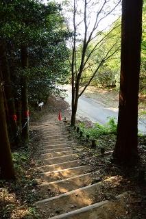岡崎中央総合公園 健康の森 夕日の小道
