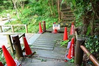 岡崎中央総合公園 健康の森 水辺の小道