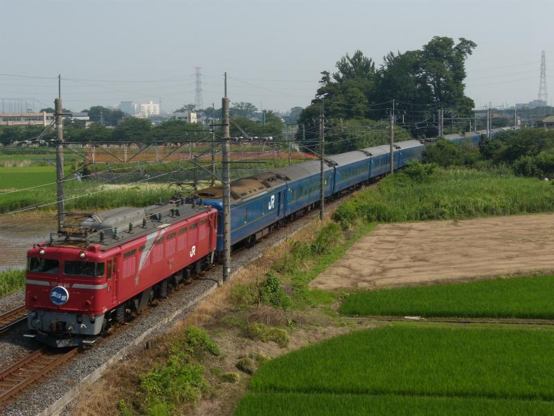 DSCN5440.jpg