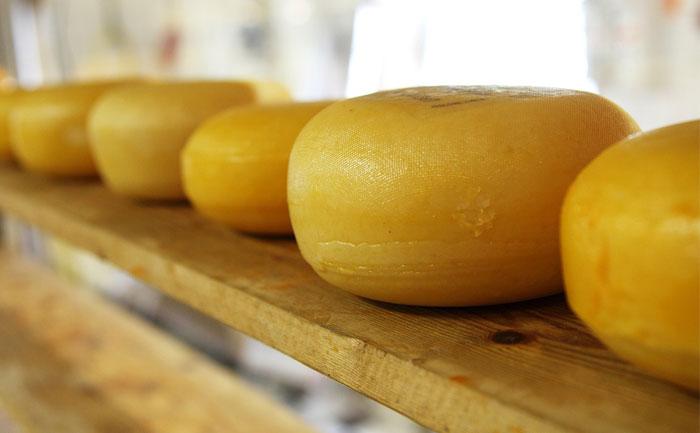 2859チーズ