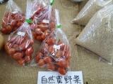 20151007浅野さんトマト