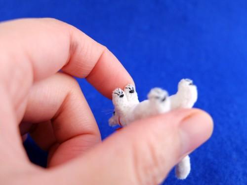 白猫ミニチュア 赤いブーツ4