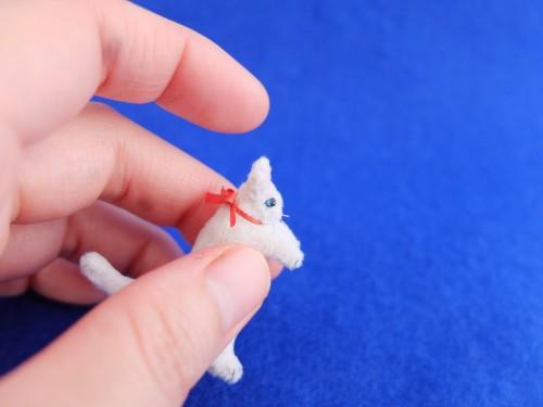 白猫ミニチュア 赤いブーツ5