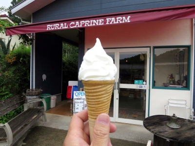 20150812RURAL CAPRINE FARM_softcream