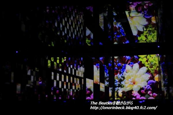 IMG6D_2015_09_12_9999_192.jpg