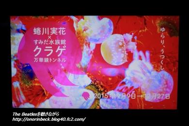 IMG6D_2015_09_12_9999_42.jpg