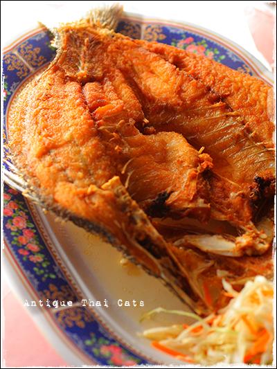 パタヤ Pattaya พัทยา タイ料理 Thaifood อาหารไทย プラーガポントードナムプラー スズキの丸ごと揚げ ปลากะพงทอดนํ้าปลา