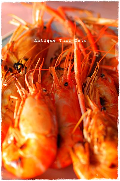 パタヤ Pattaya พัทยา タイ料理 Thaifood อาหารไทย 海老の炭火焼き กุ้งเผา