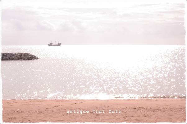 パタヤ Pattaya พัทยา リゾート resort รีสอร์ท 砂浜 beach หาดทราย 海 sea ทะเล キラキラ 夕日 sunset