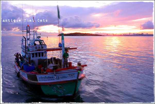 島遊び1 漁船 fishing vessel เรือประมง ラン島 Koh Larn เกาะล้าน 朝日 rising sun ดวงอาทิตย์ยามเช้า
