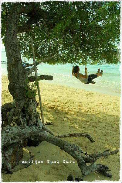 木の枝ぶらんこ swing ชิงช้า 海 sea ทะเล リゾート resort รีสอร์ท ラーン島 ヌアンビーチ หาดนวล เกาะล้าน Nual beach Koh laan