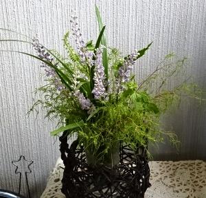 15庭の花