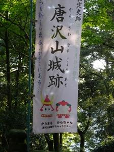 15唐沢5