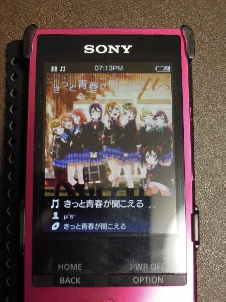 DSCN9247.jpg