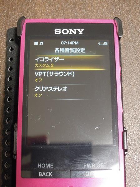DSCN9251.jpg