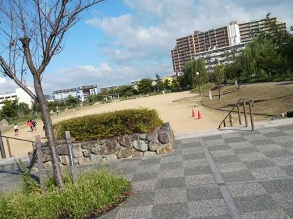 busonparkDCIM0059.jpg