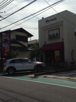 NishinomiyaDavinci_002_org.jpg