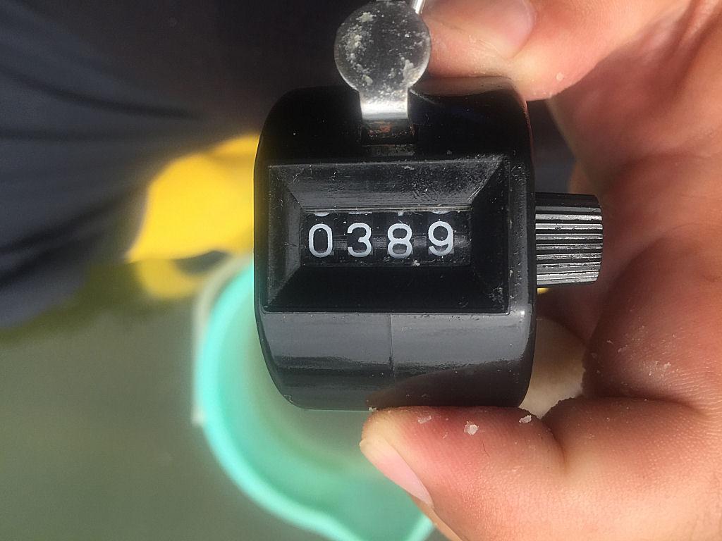 7091617.jpg