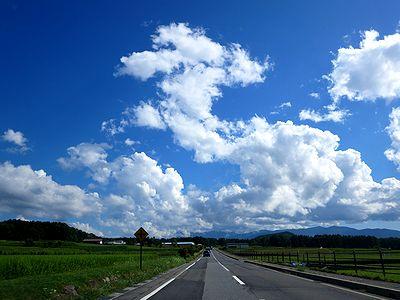 八ヶ岳エコーラインの風景