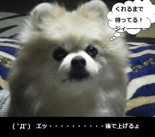DSCF9777.jpg