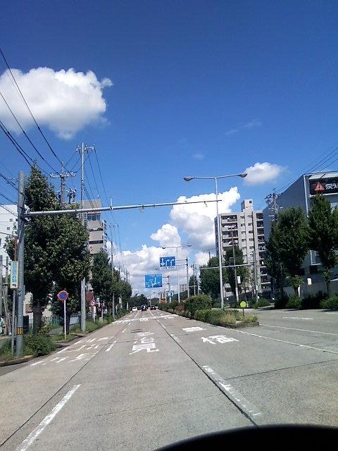 Image617.jpg