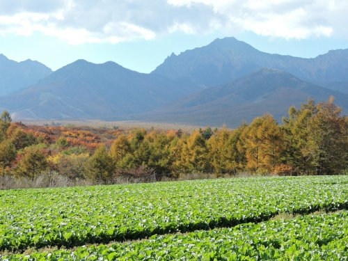2015-13野辺山県境