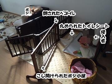 juneIMG_7997.jpg