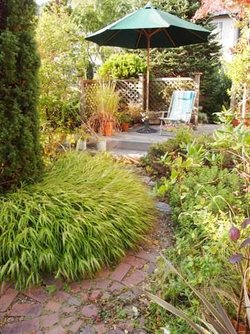 my-garden 026 (2)