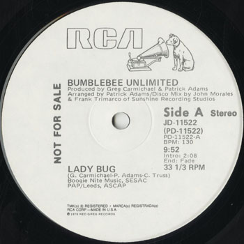 DG_BUMBLEBEE UNLIMITED_LADY BUG_201507