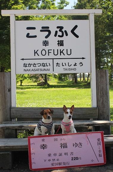2015_6_21北海道_10